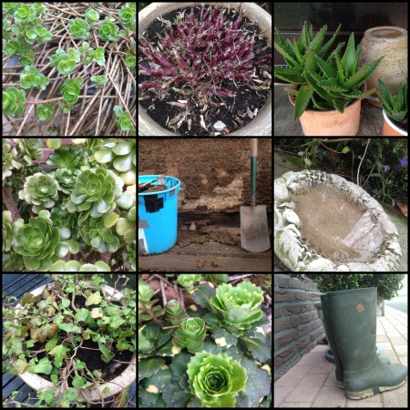 tuin collage